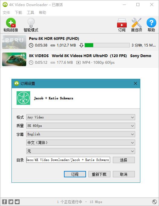 4K Video Downloader v4.13.0 绿色特别版
