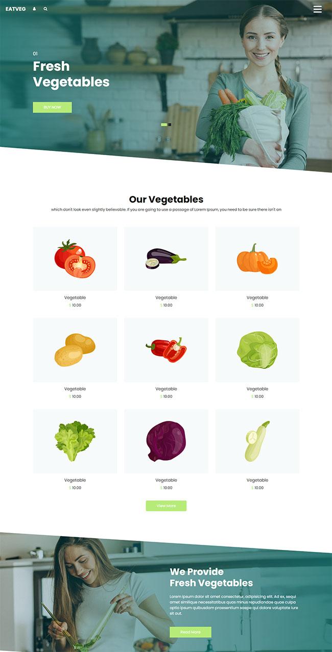 蔬菜销售电子商务网站模板0101