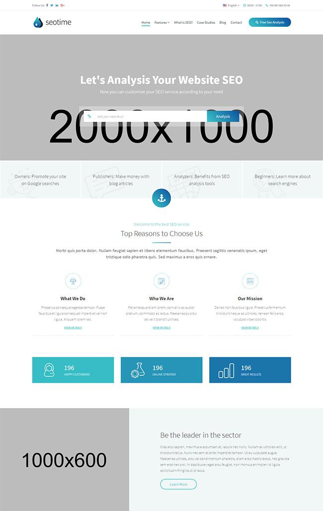 SEO搜索排名优化网站模板216