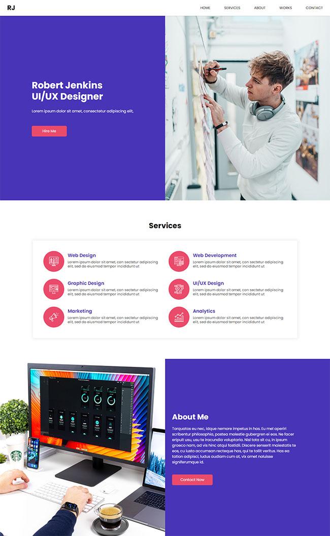 UX用户体验设计网站模板221